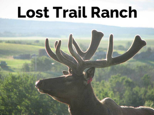 Lost-Trail-Ranch-LostTrailRanch