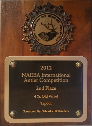 NAEBA International Antler Competition - 2012 Winner